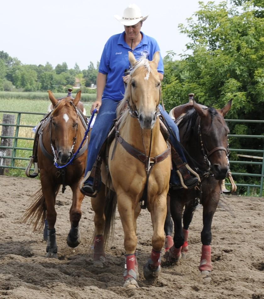 My Ponies